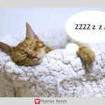 薬剤師が朝寝坊しないためにやること7選